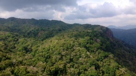 Durch diesen Abschnitt Regenwald arbeiteten wir uns nach oben