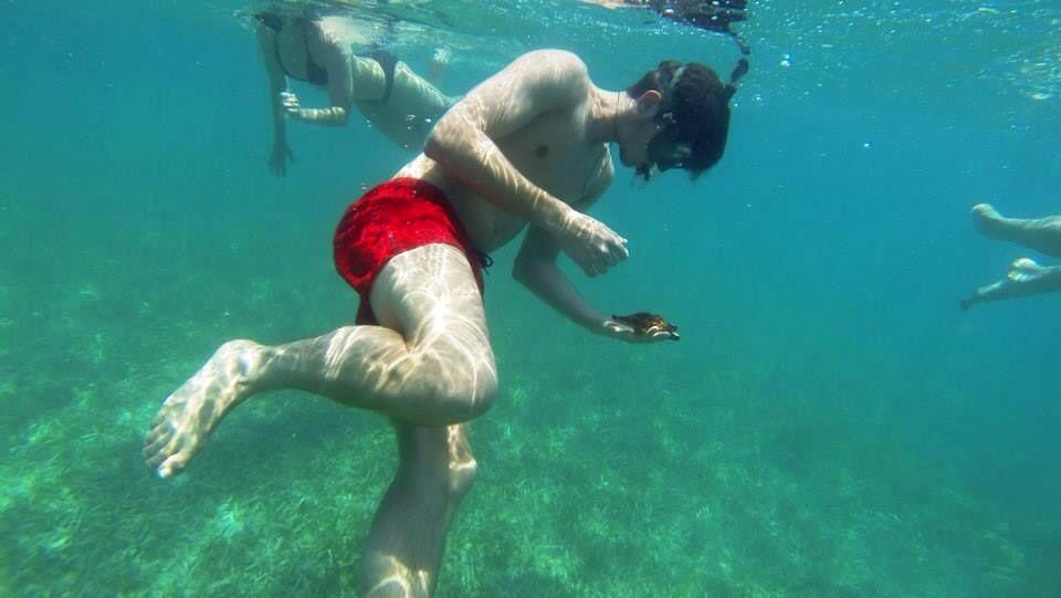 Martin beim Seesternesuchen