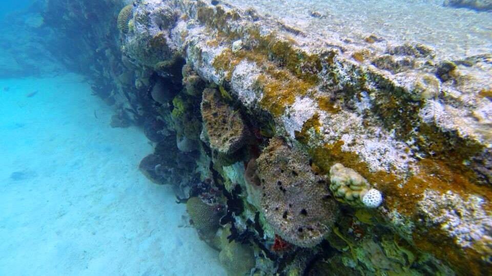 Das Schiffswrack vor Perro-Island